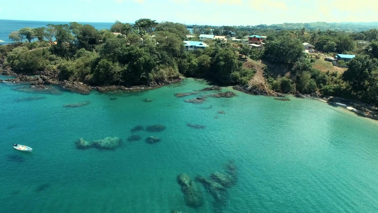 Licorish Villa in Tobago Beach